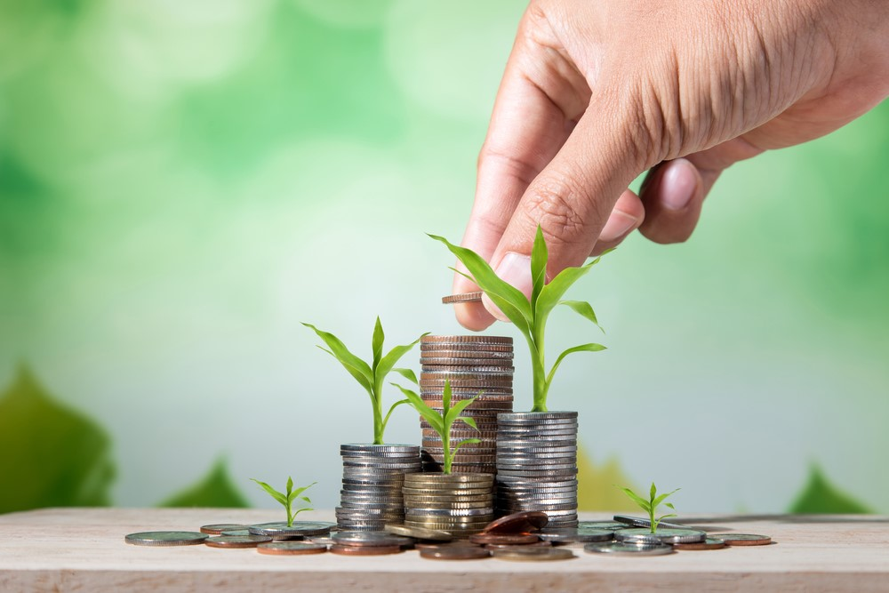 Top Tips for Beginner Investors